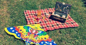 picnic d'estate 3