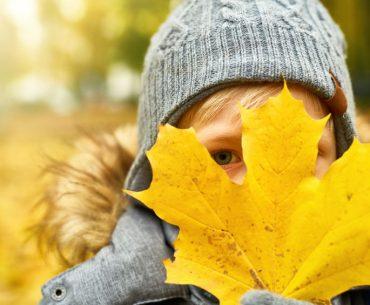 Lavoretti per bambini con le foglie d'autunno