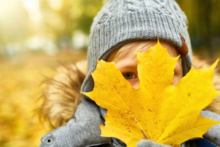 lavoretti con foglie bambini autunno