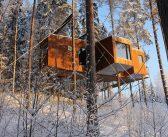 Le più belle case sugli alberi dove dormire con i bambini