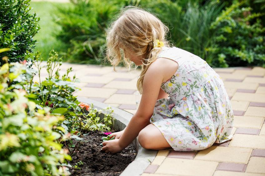 I consigli per fare l orto con i bambini  5bc713c399ab