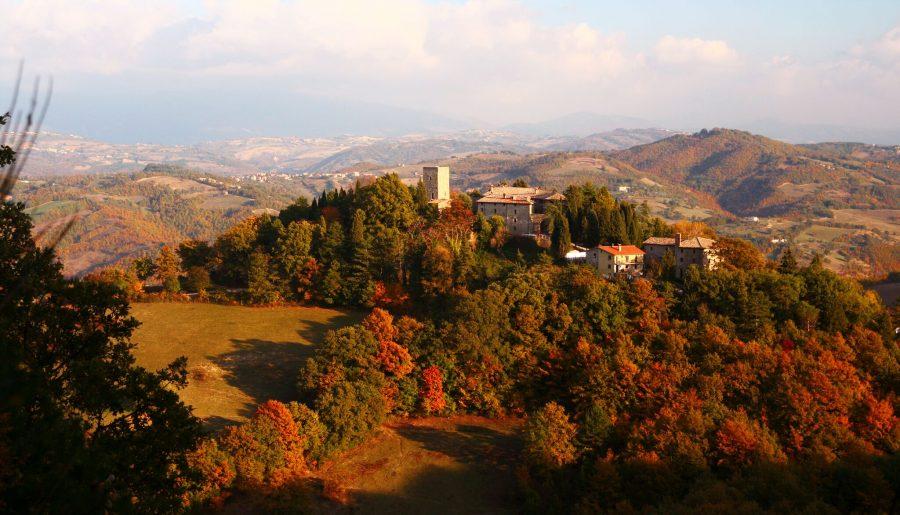 Foliage: dove prenotare un weekend in famiglia per vedere i colori dell'autunno!
