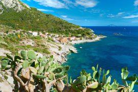isola elba spiaggia fetovaia