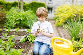 orto con bambini consigli utili
