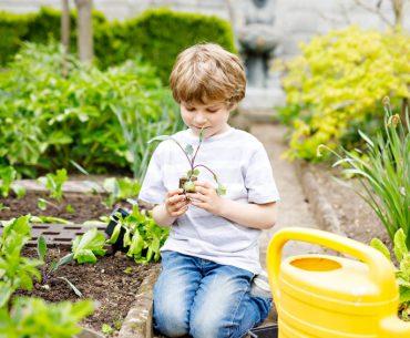 I consigli per fare l'orto con i bambini